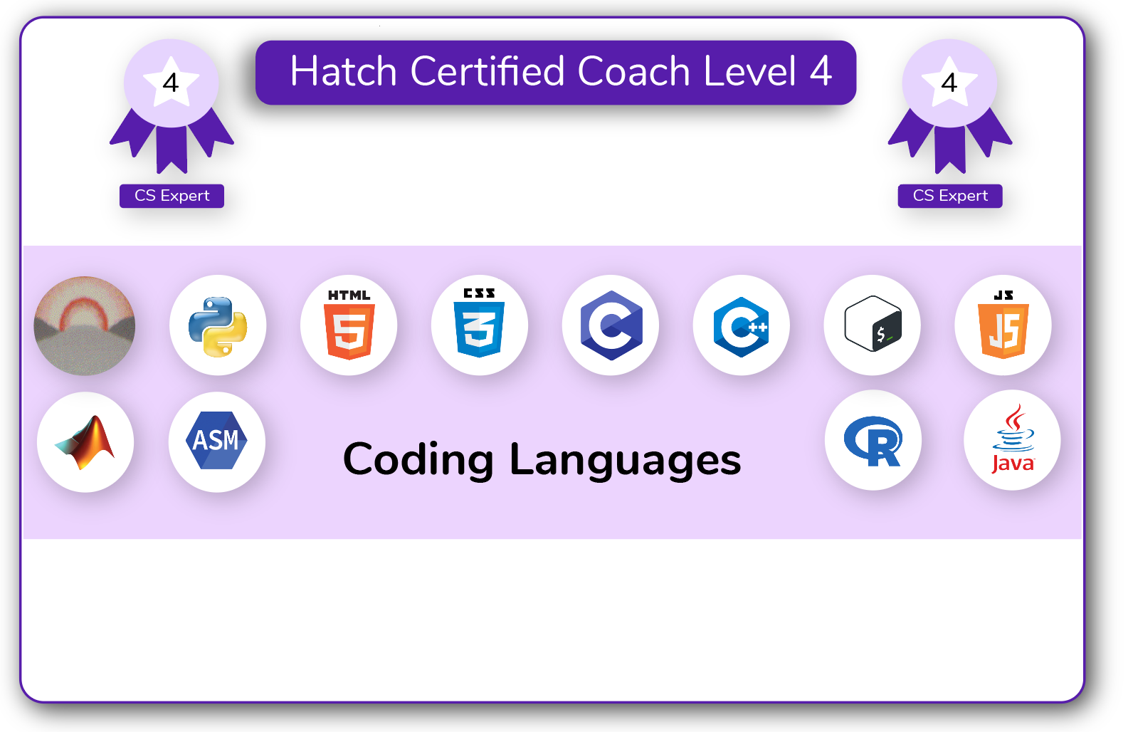 Coach Certification Level